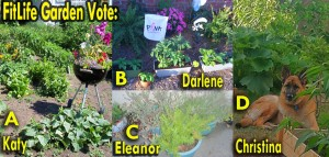 Obama FitLife Garden Contest by SusieQ FitLife