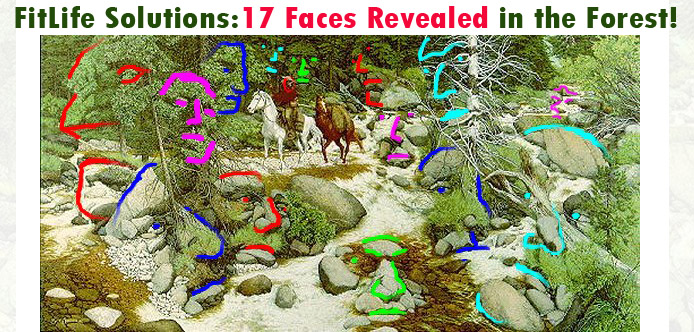 FitLife Trivia Solutions from SusieQ FitLife! The Forest has Eyes!